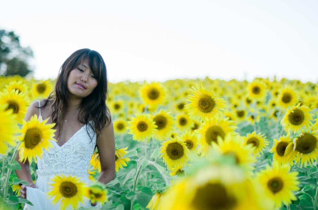 sunflower dc metro