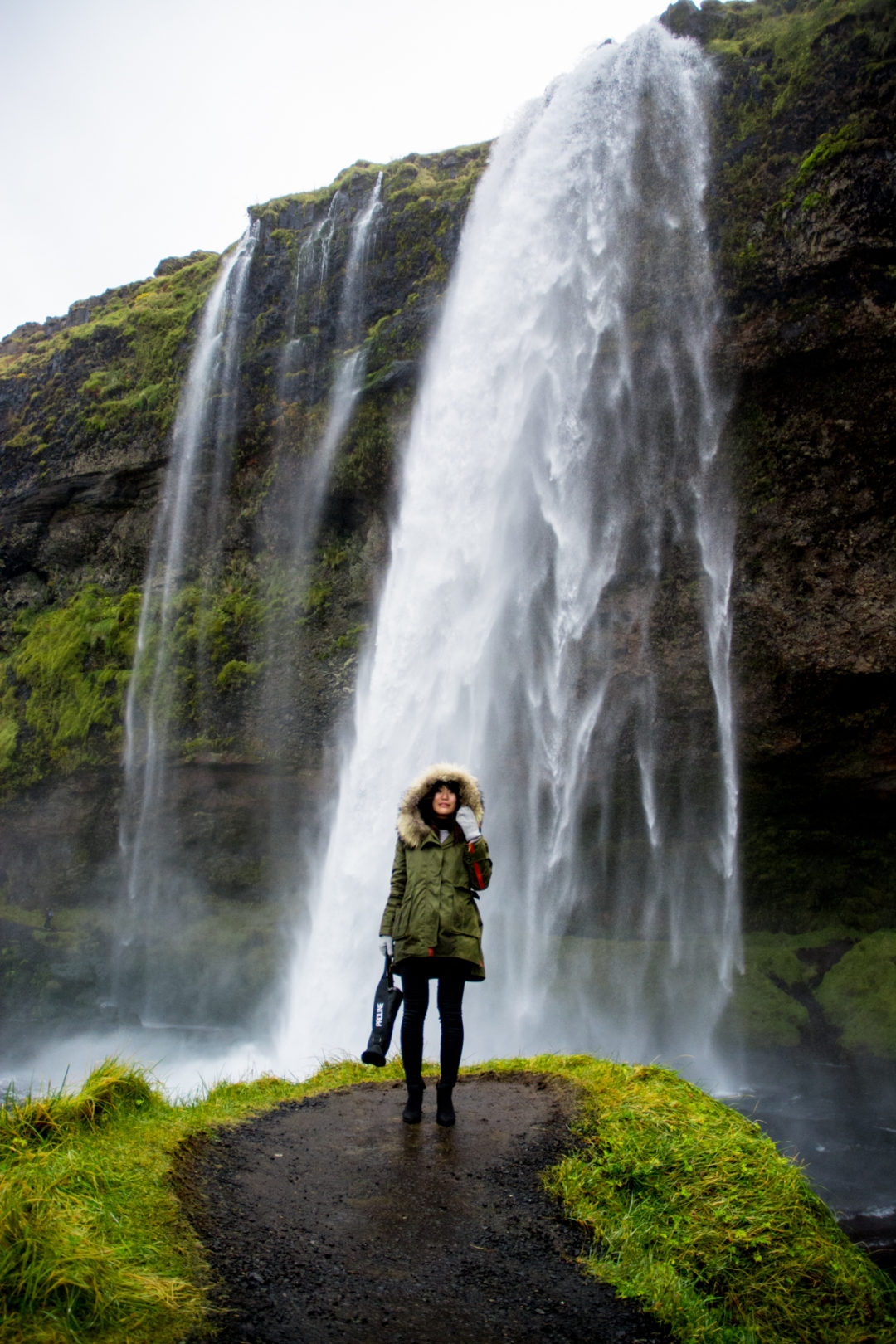 seljalandsfoss iceland day tour