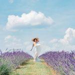 Lavender is Blooming at this Stunning Winery in Maryland: Springfield Manor
