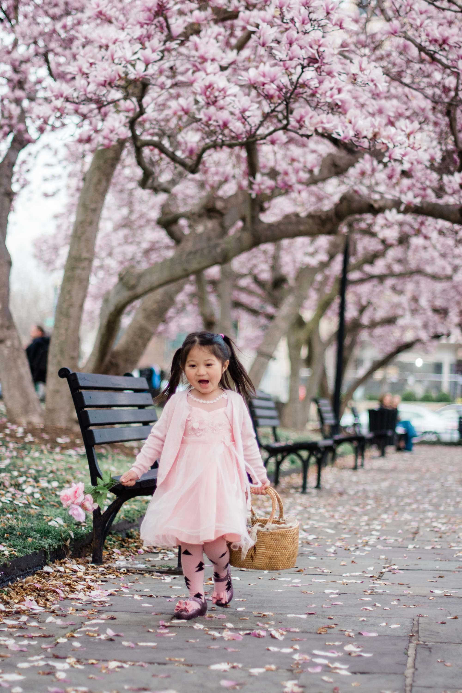 Washington DC Photographer Cherry Blossoms