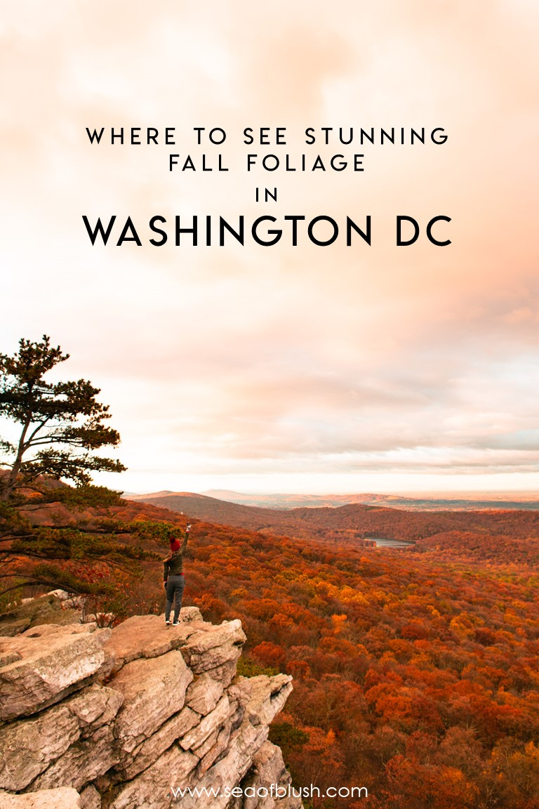 fall hiking dc