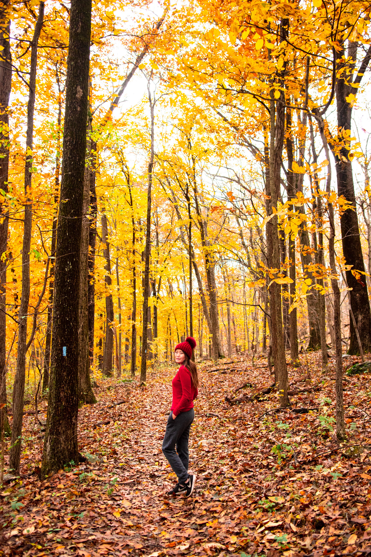 where to go hiking in fall dc