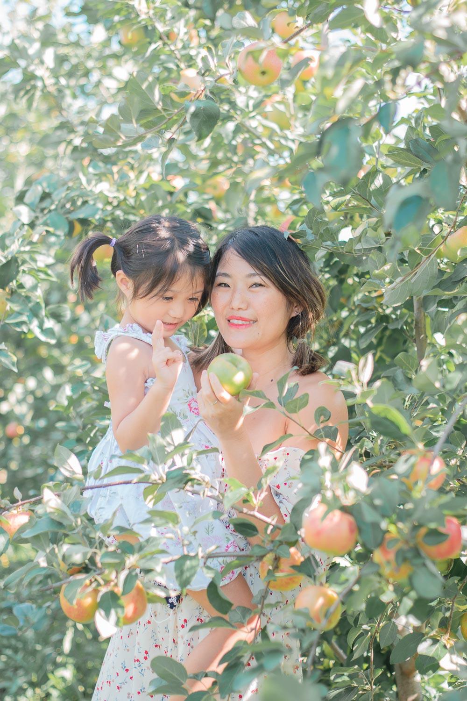 apple orcharh photo shoot dc