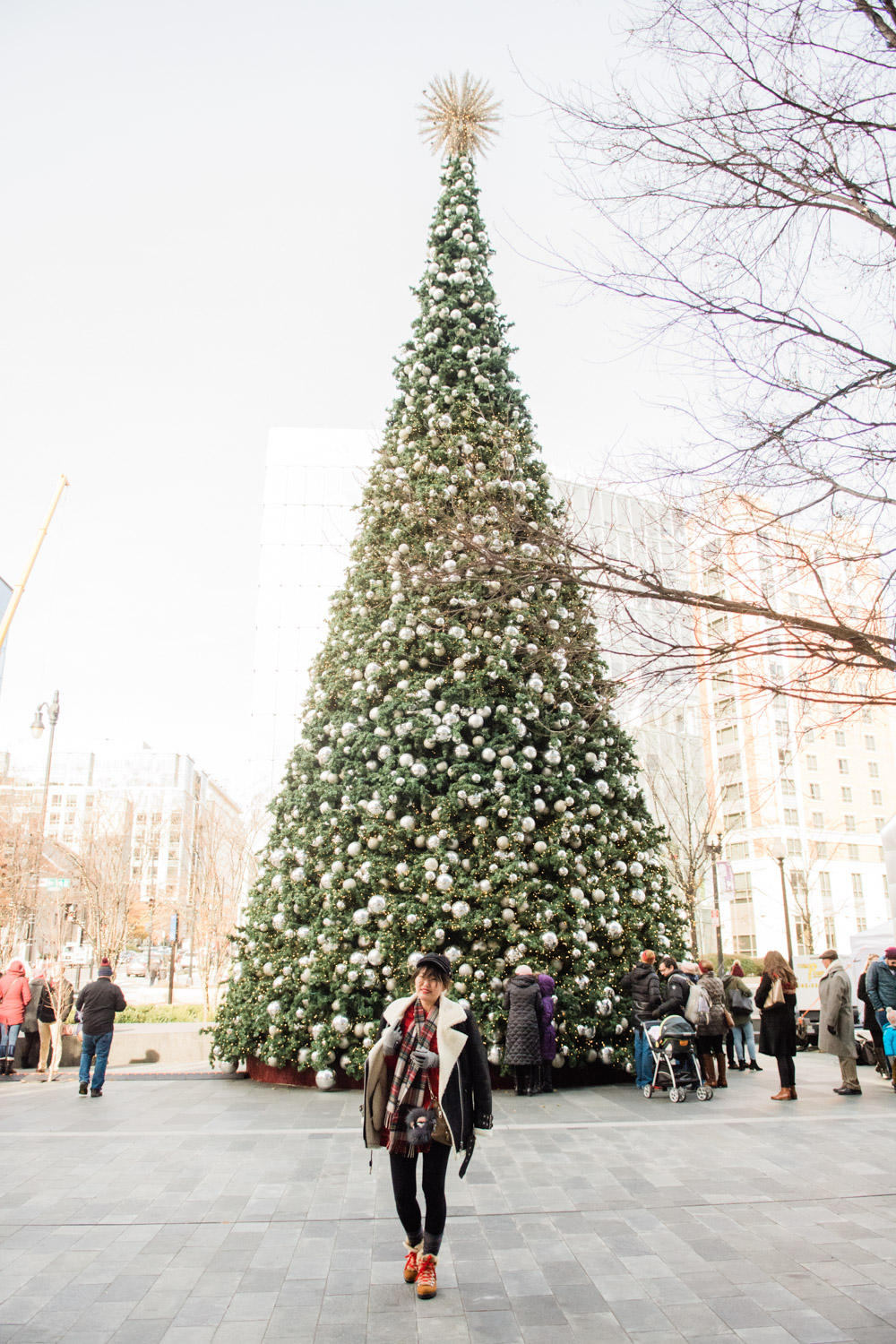 christmas tree dc