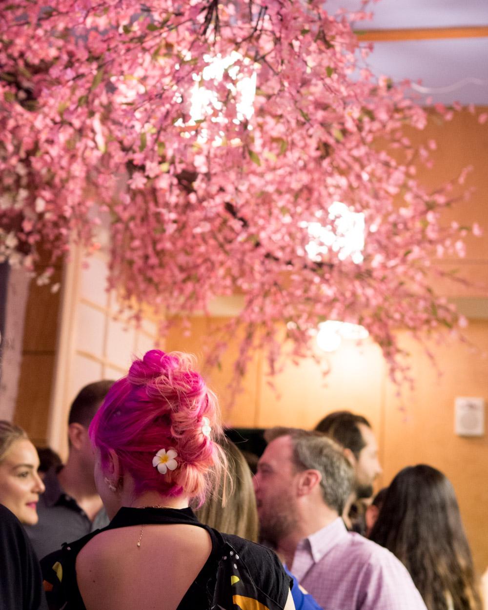 dc cherry blossom bar