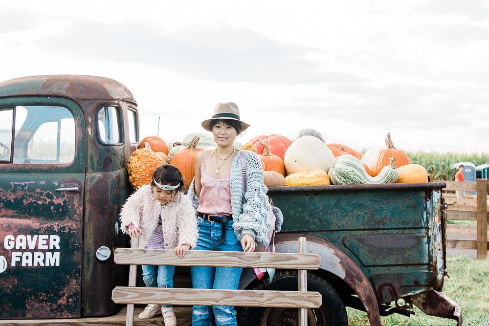 dc pumpkin patch