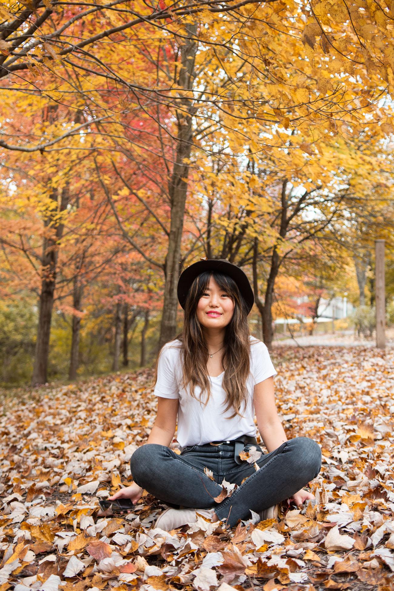 fall color 2019 washington dc