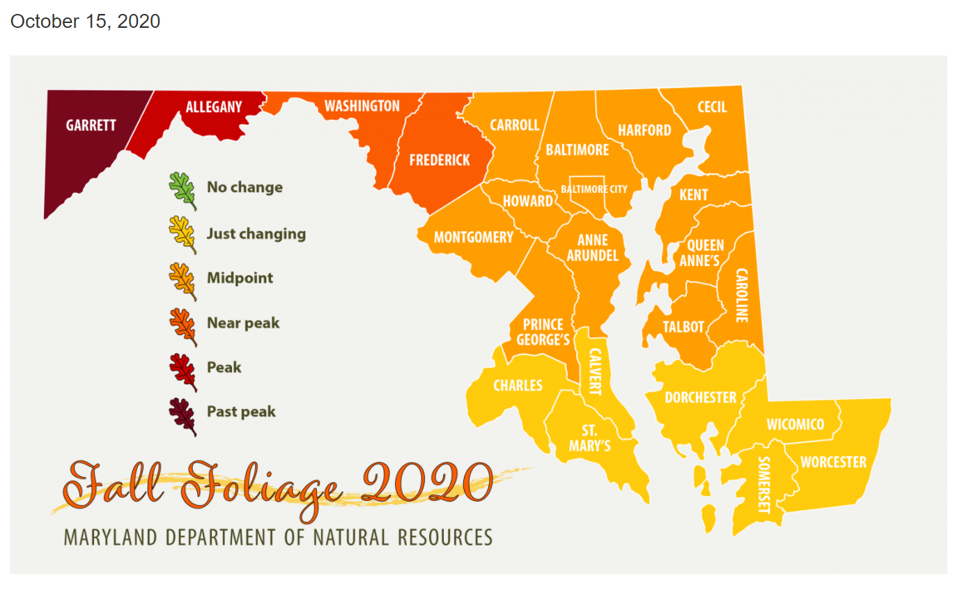 fall foliage map maryland 2020