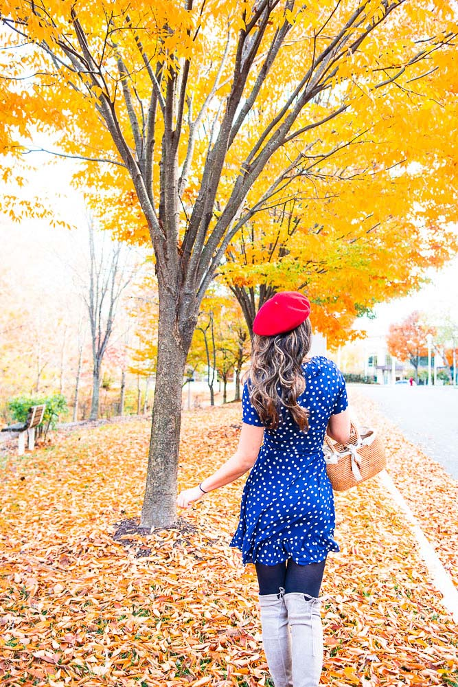fall photo poses