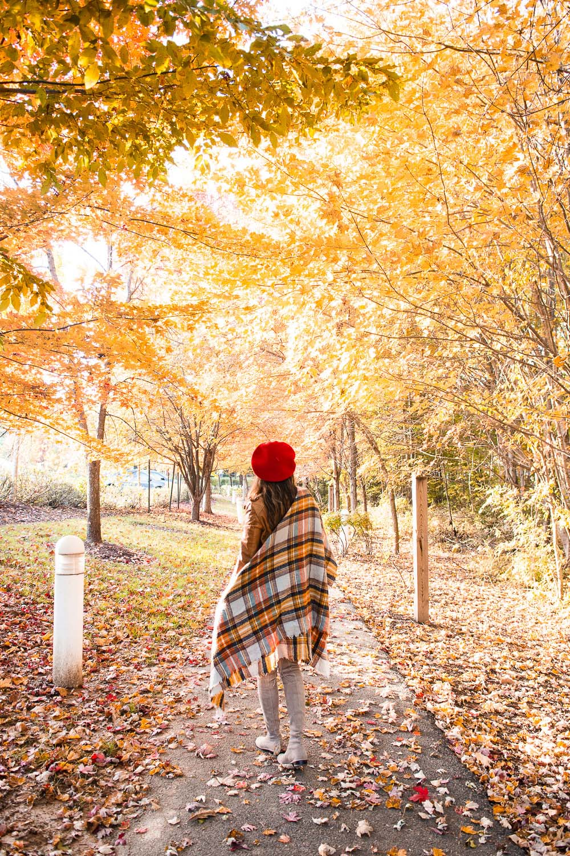 fall photo shoot for instagram