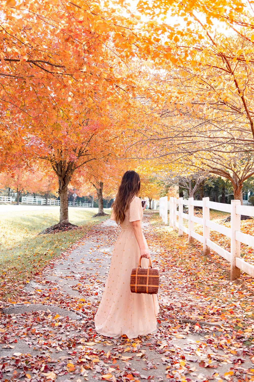 fall photo shoot ideas for instagram