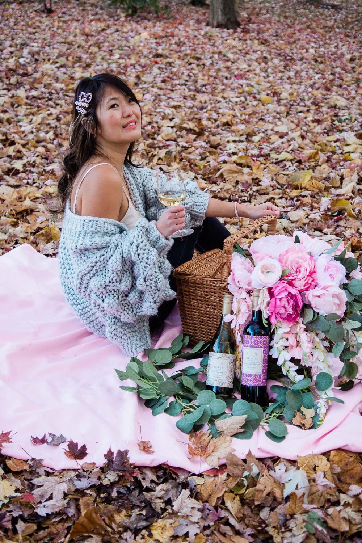 fall picnic photo shoot