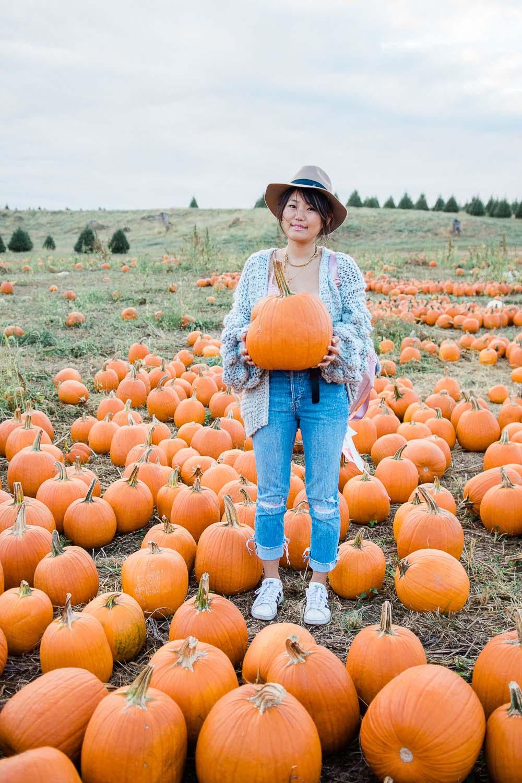 fall pumpkin photoshoot