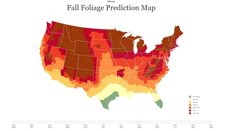 maryland fall foliage map 2021