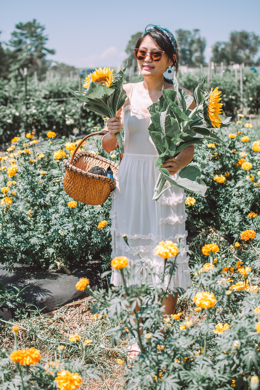 mrs butlers flower garden