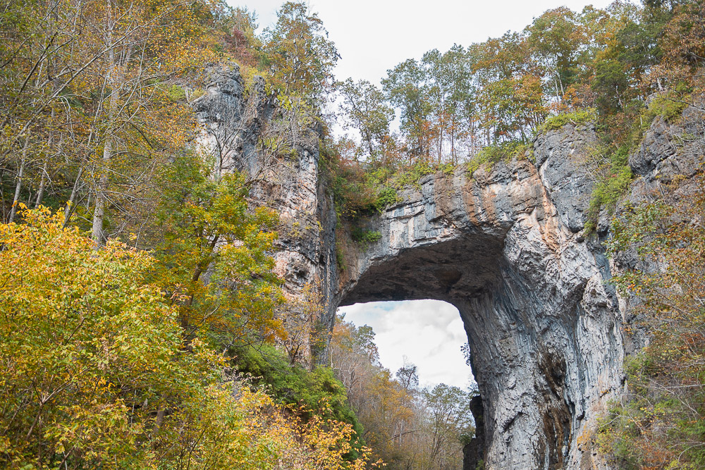 natural bridge state park virginia