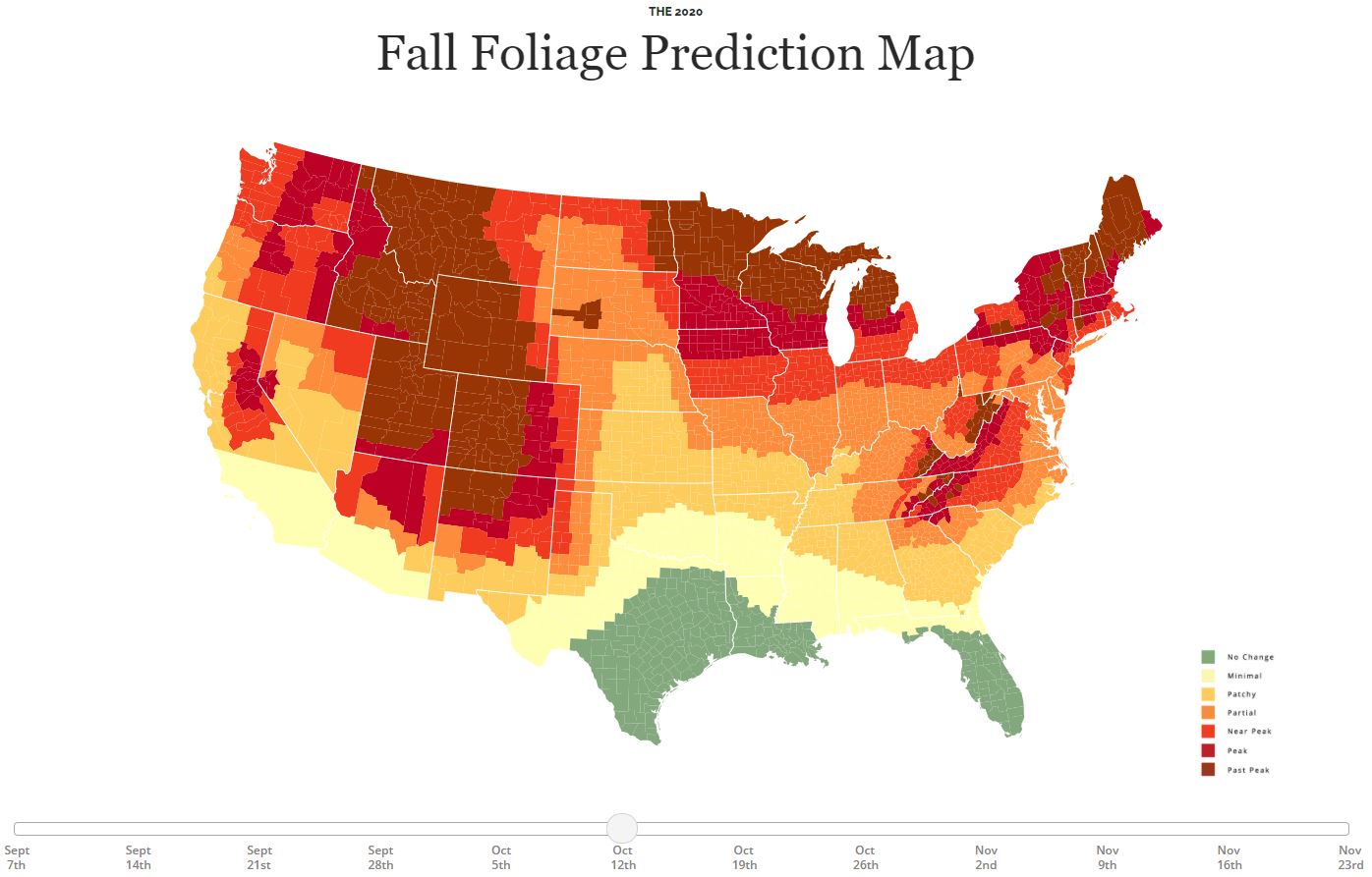 peak fall foliage virginia