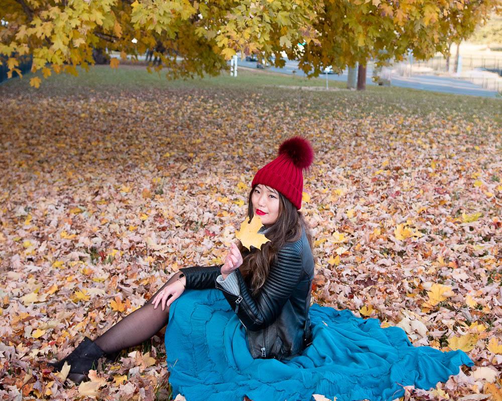 fall photo