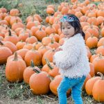 15 of the Best Pumpkin Patches in Maryland to Visit this Fall 2020
