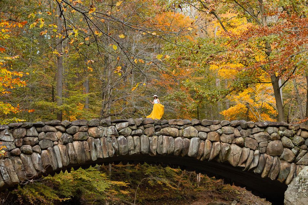 rock creek fall color dc