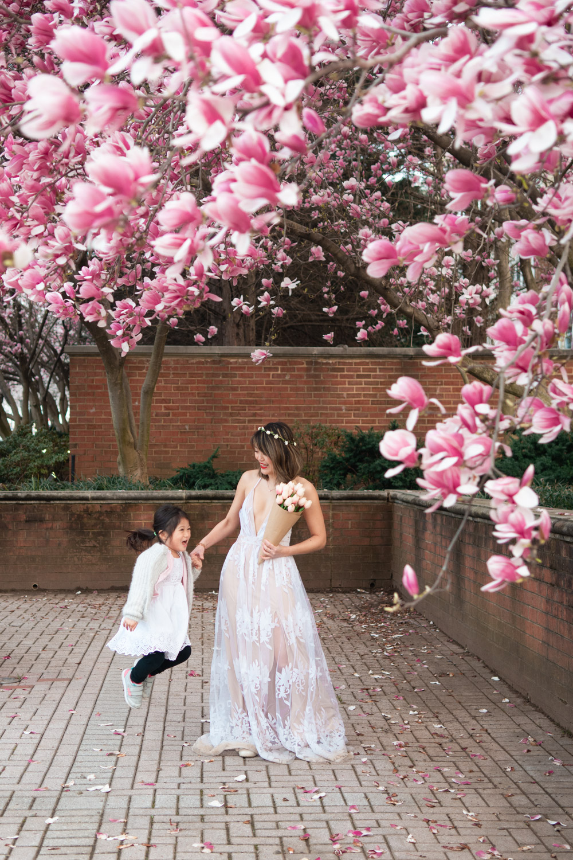 rockville magnolias