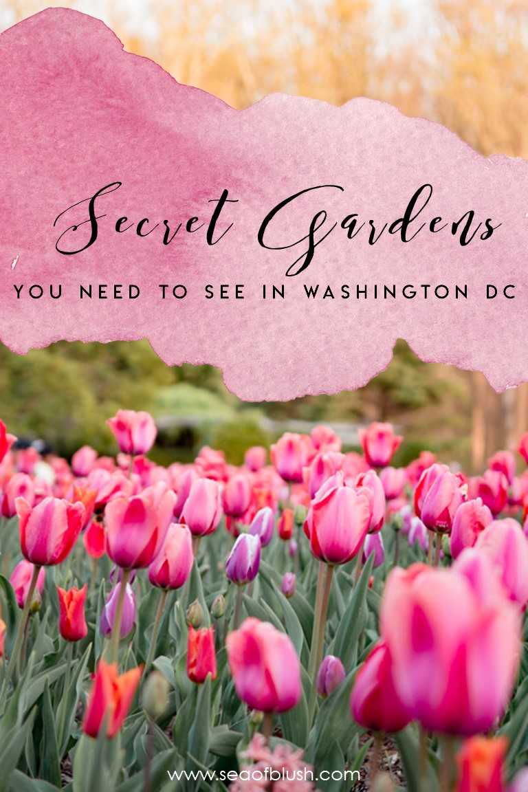 gardens in dc