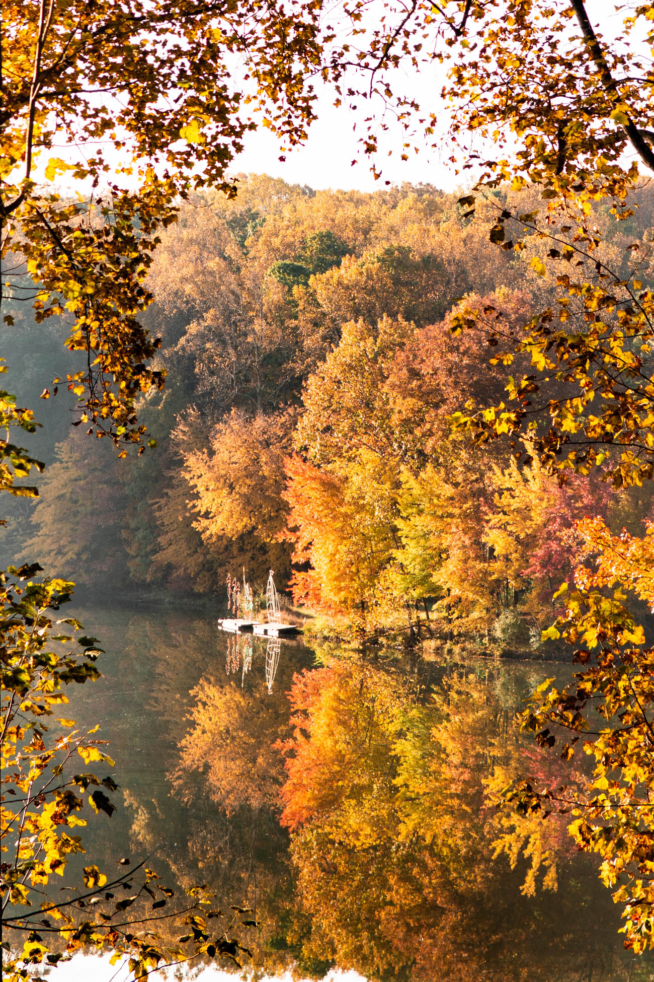 where to see fall foliage in dc and maryland