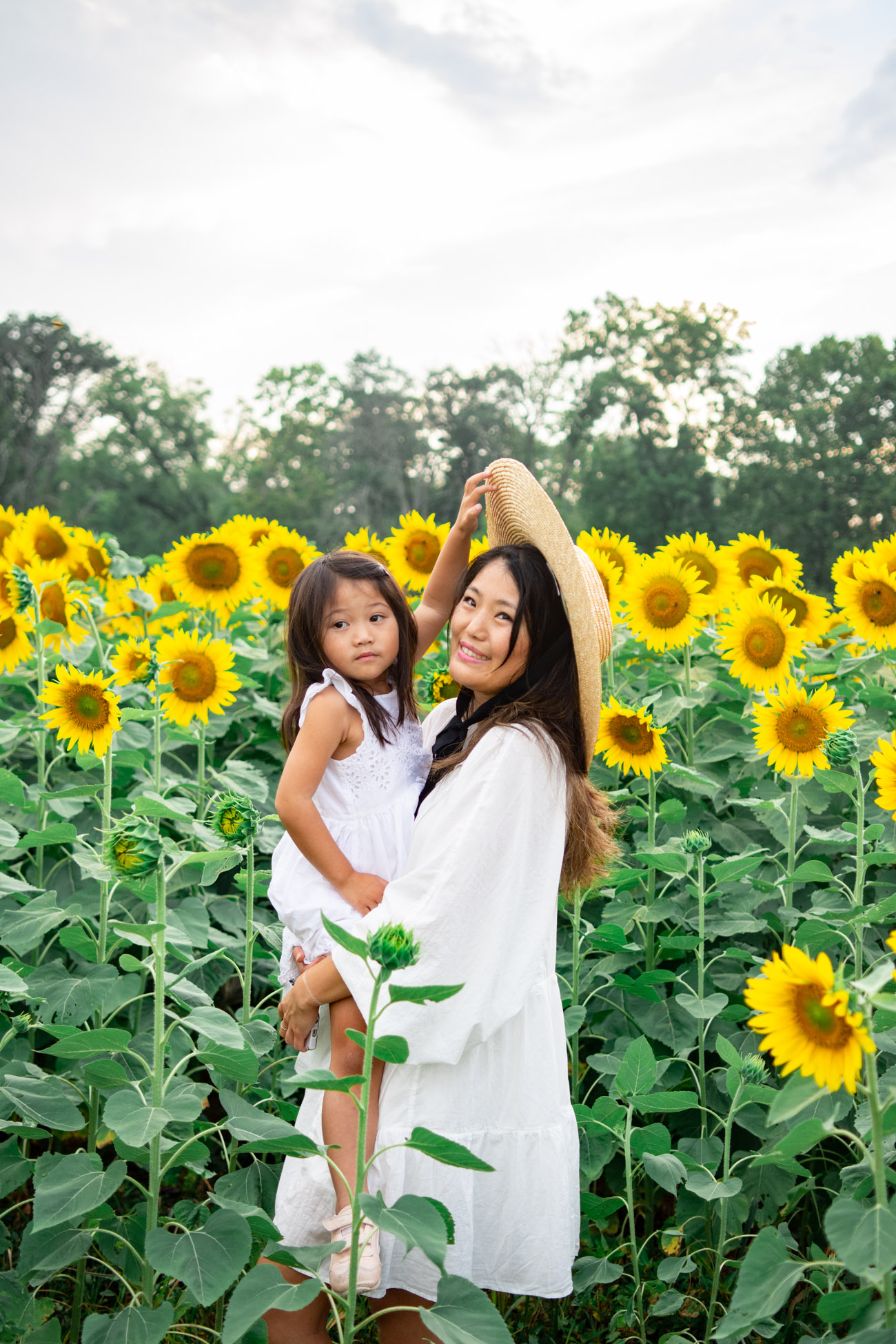 sunflower mini session maryland