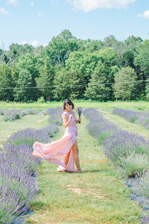 virginia lavender farm