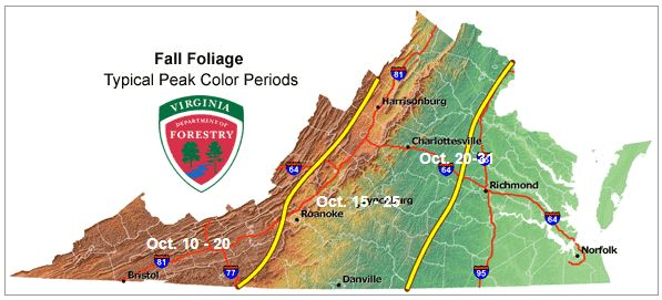 virginia peak fall foliage map